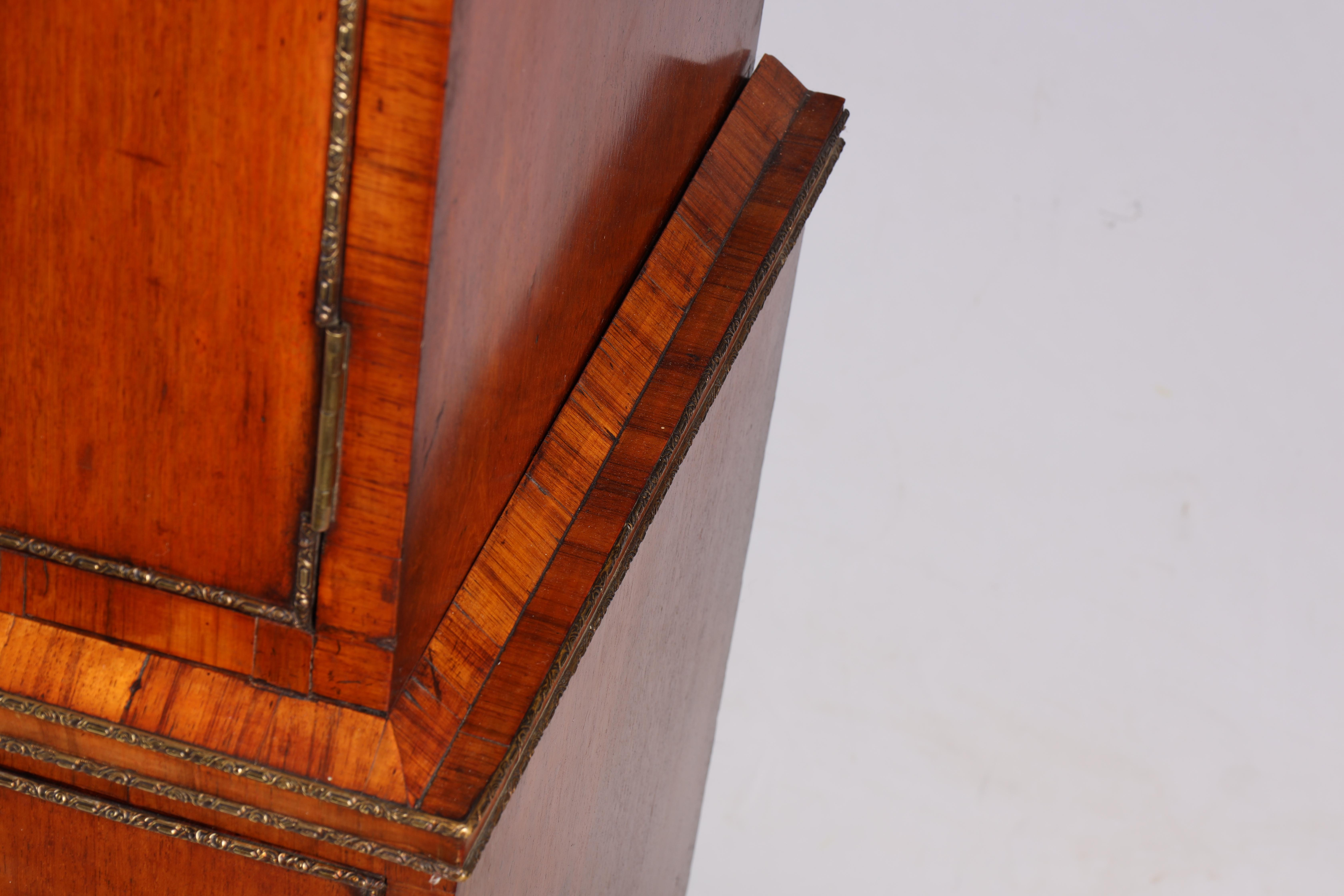A LARGE PAIR OF GEORGE III KINGWOOD BANDED MAHOGANY PEDESTALS with unusual pen work panels depicting - Image 10 of 11