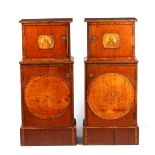 A LARGE PAIR OF GEORGE III KINGWOOD BANDED MAHOGANY PEDESTALS with unusual pen work panels depicting