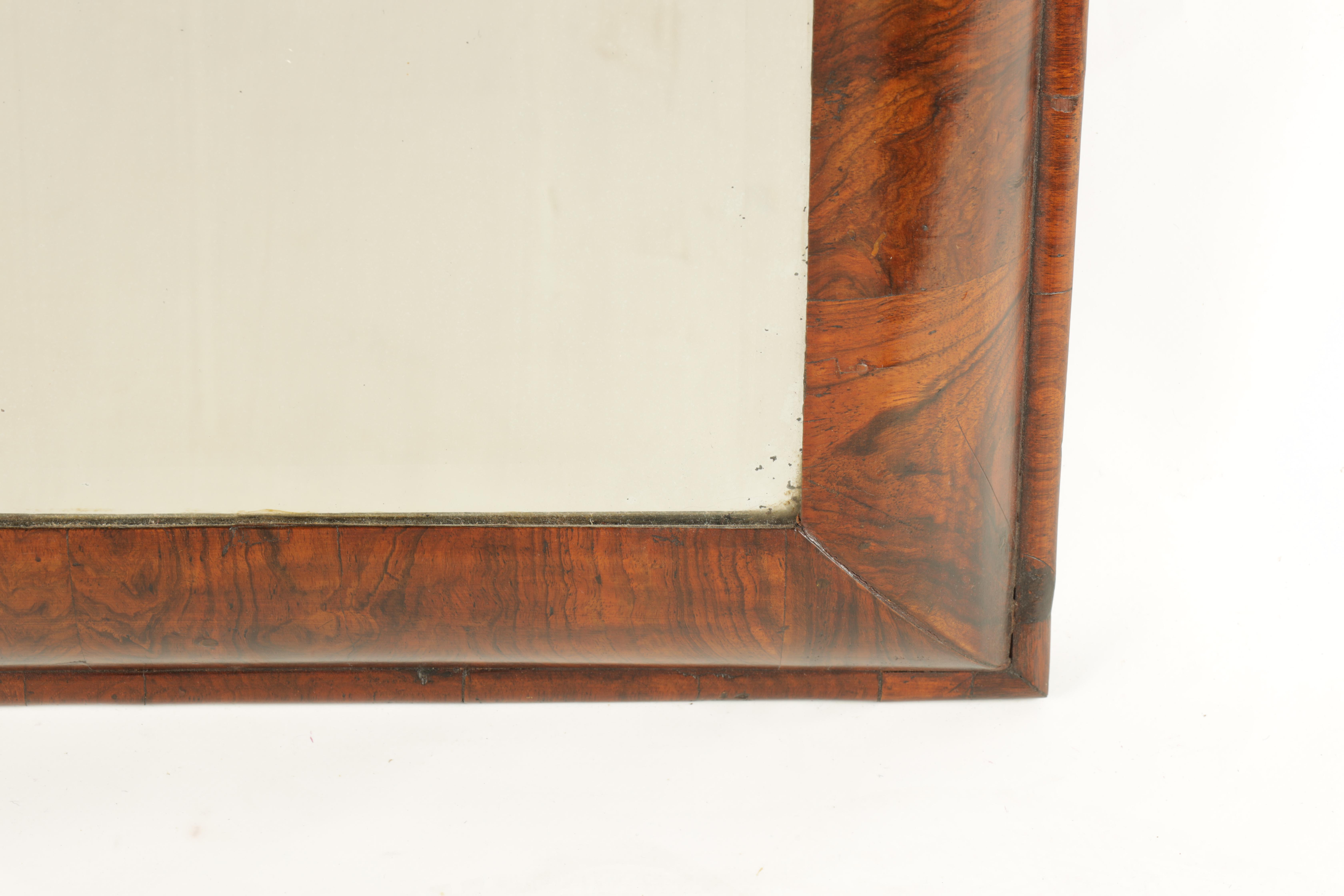 A WILLIAM AND MARY FIGURED WALNUT D SHAPED HANGING MIRROR fitted with original bevelled mirror - Image 4 of 5