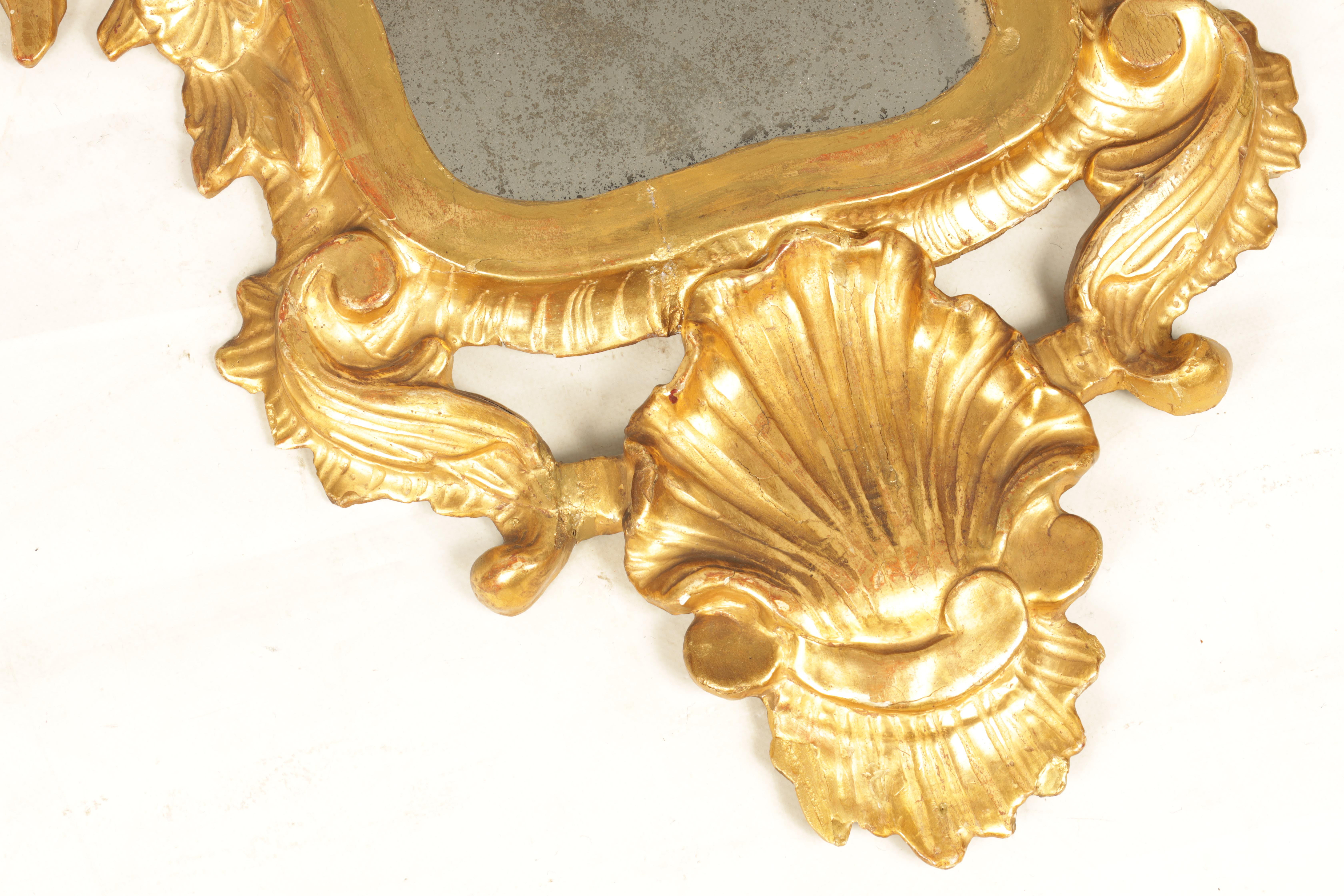 A PAIR OF 19TH CENTURY CARVED GILT WOOD ITALIAN FLORENTINE MIRRORS with leaf and shell carved frames - Image 6 of 8