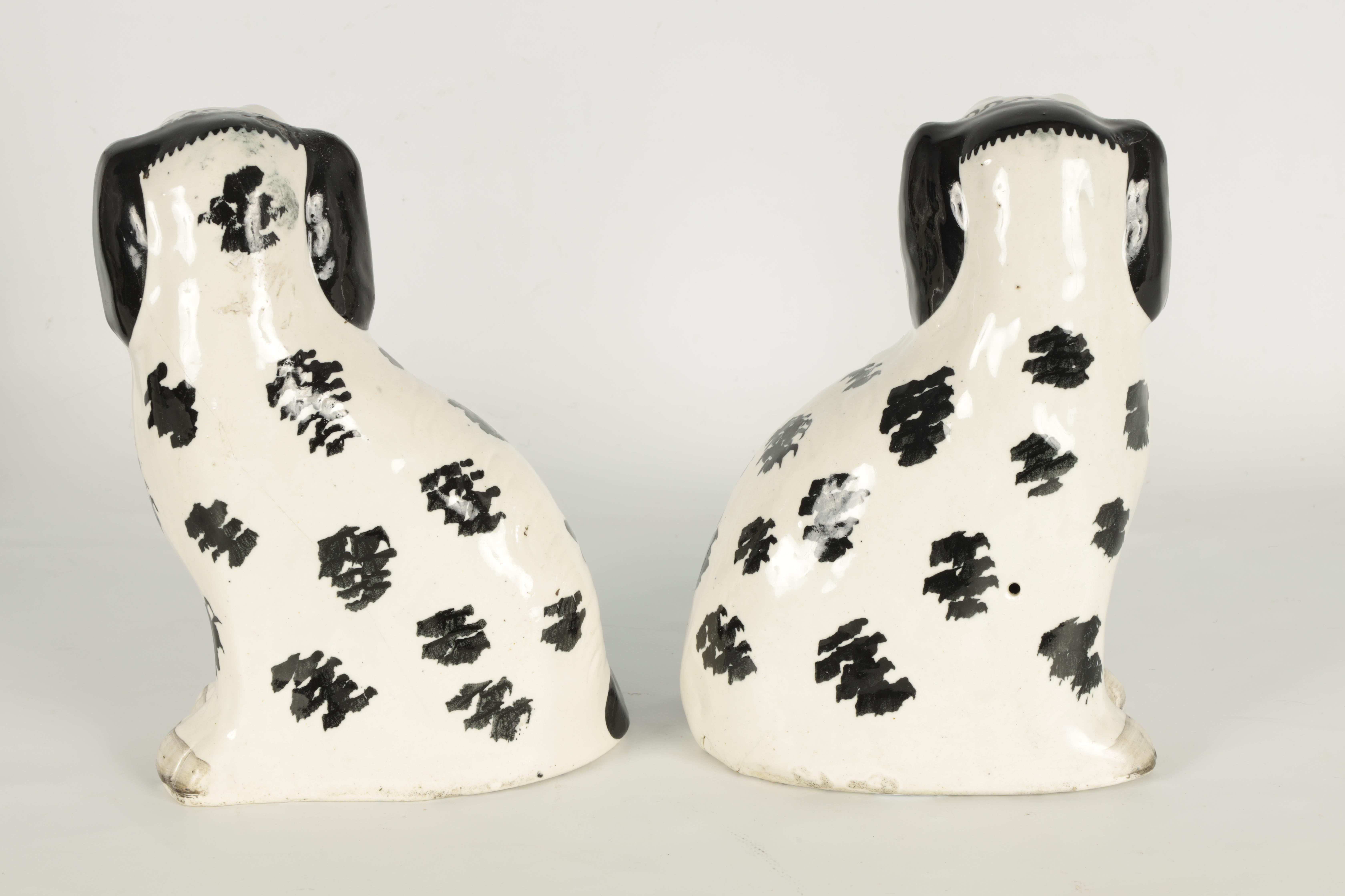 A PAIR OF 19TH CENTURY STAFFORDSHIRE 'DISRAELI CURL' SPANIELS 23cm high - Image 5 of 11