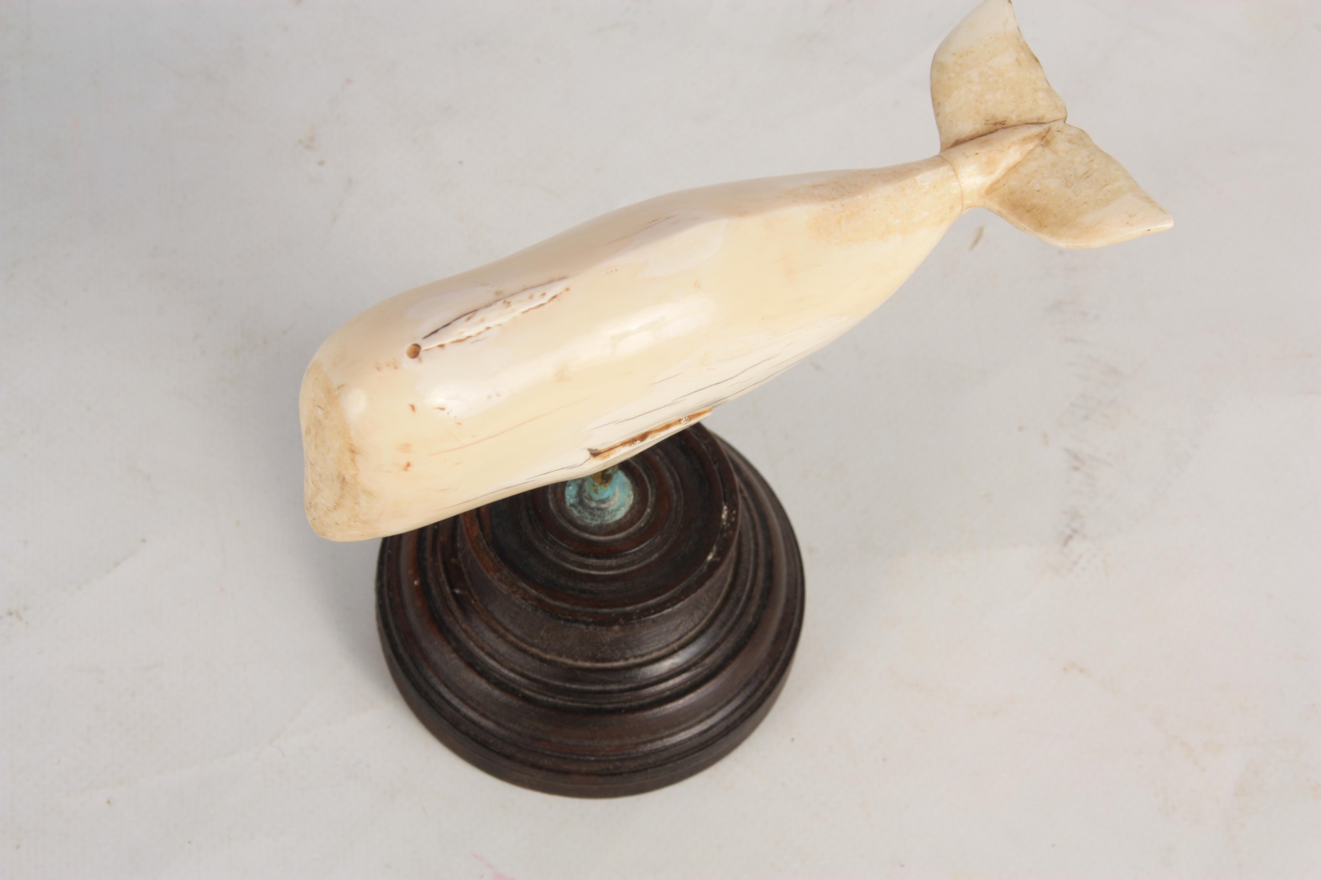 A 19TH CENTURY SAILOR'S WHALE TOOTH SCULPTURE ON STAND modelled as a sperm whale mounted on a turned - Image 9 of 9