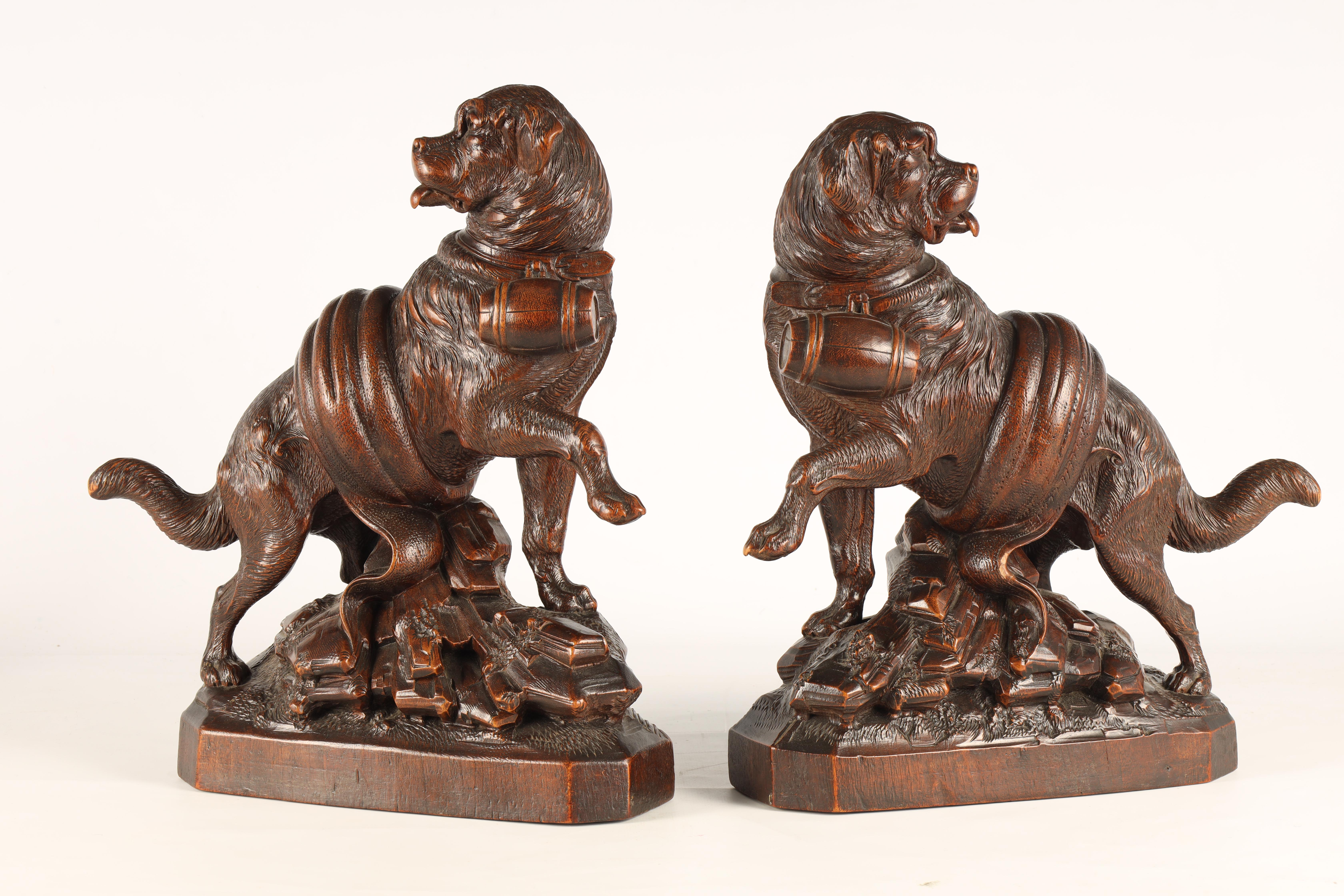 A GOOD QUALITY PAIR OF LATE 19TH CENTURY BLACK FOREST CARVED SCULPTURES modelled as Saint Bernards - Image 2 of 6