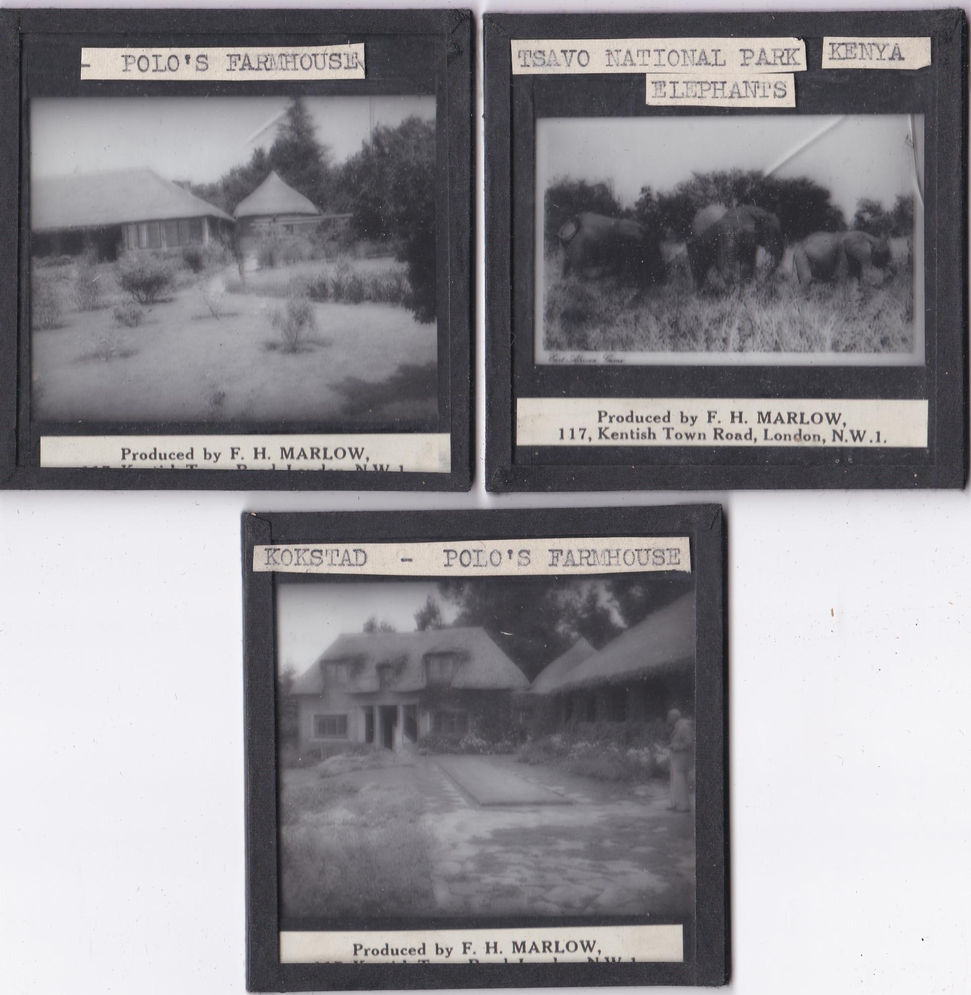 Views in Africa b/w Magic Lantern Slides (11) produced by F.H. Marlow including: Tsavo National Park - Image 2 of 3
