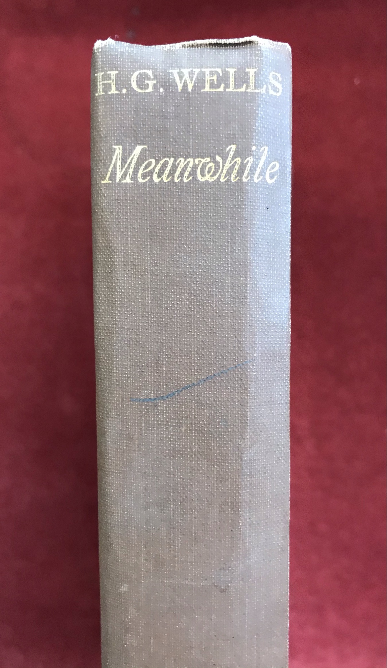 Meanwhile: The Picture of a LadyFirst edition, 1927