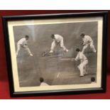 """Colin Cowdrey taking a catch at first slip for England - 9"""" x 7"""" autographed by Colin Cowdrey"""