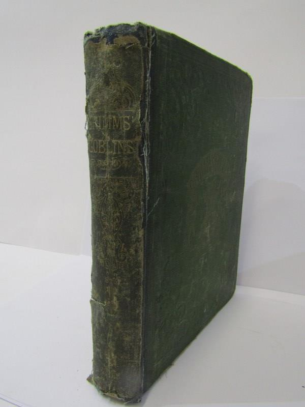 "GRIMMS BROTHERS ""Grimms Goblins"" in original green cloth re-backed, circa 1868 - Image 6 of 6"