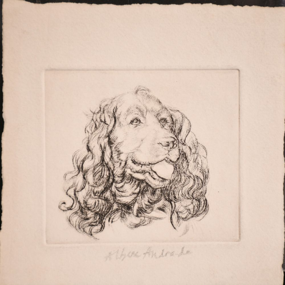 Athena Andrade, A group of dog etchings signed in pencil, etchings, various sizes, (5) - Image 4 of 6