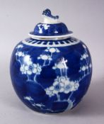 A 19TH / 20TH CENTURY CHINESE BLUE & WHITE PORCELAIN PRUNUS GINGER JAR & COVER, with prunus