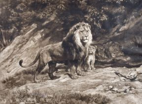 Herbert Dicksee (1862-1942) After Rosa Bonheur, A family of lions, etching, signed in pencil, 19""