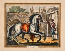 """A collection of equestrian prints including 'Terre a Terre' and 'La Capriole', inscribed, all 4.5"""" x"""