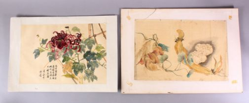 TWO CHINESE PAINTINGS OF NATIVE FLORAL DISPLAY, one on paper depicting natural vegetable growth,