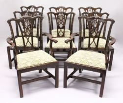 A GOOD SET OF EIGHT GEORGE III DESIGN MAHOGANY DINING CHAIRS, two with arms, all with well carved