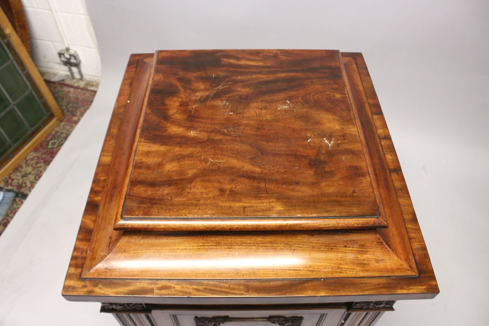 A GOOD 19TH CENTURY MAHOGANY PEDESTAL CUPBOARD, with a concave moulded top, panelled frieze with - Image 2 of 8