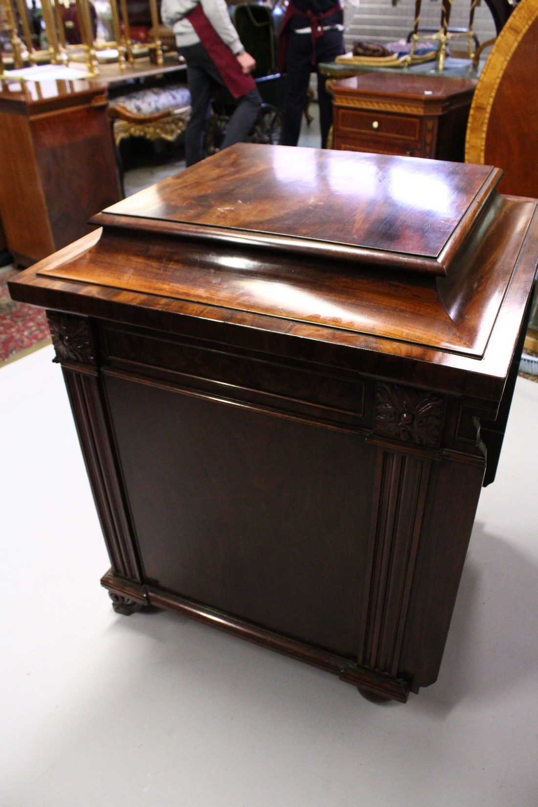 A GOOD 19TH CENTURY MAHOGANY PEDESTAL CUPBOARD, with a concave moulded top, panelled frieze with - Image 4 of 8