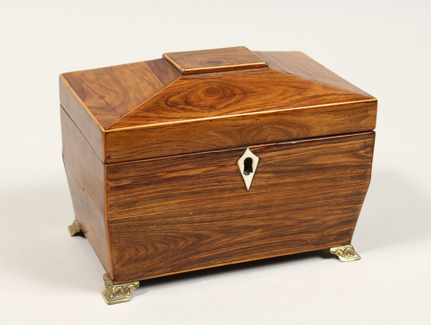 A REGENCY ROSEWOOD DOMED TOP TWO DIVISION TEA CADDY with iron escutcheon on brass bracket feet. 7.