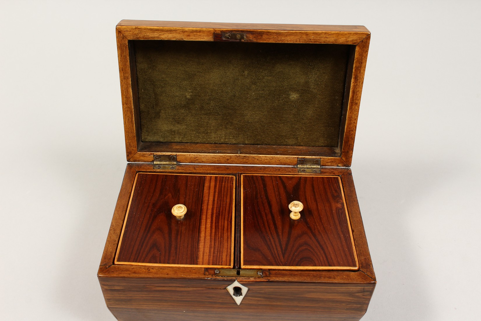 A REGENCY ROSEWOOD DOMED TOP TWO DIVISION TEA CADDY with iron escutcheon on brass bracket feet. 7. - Image 6 of 7
