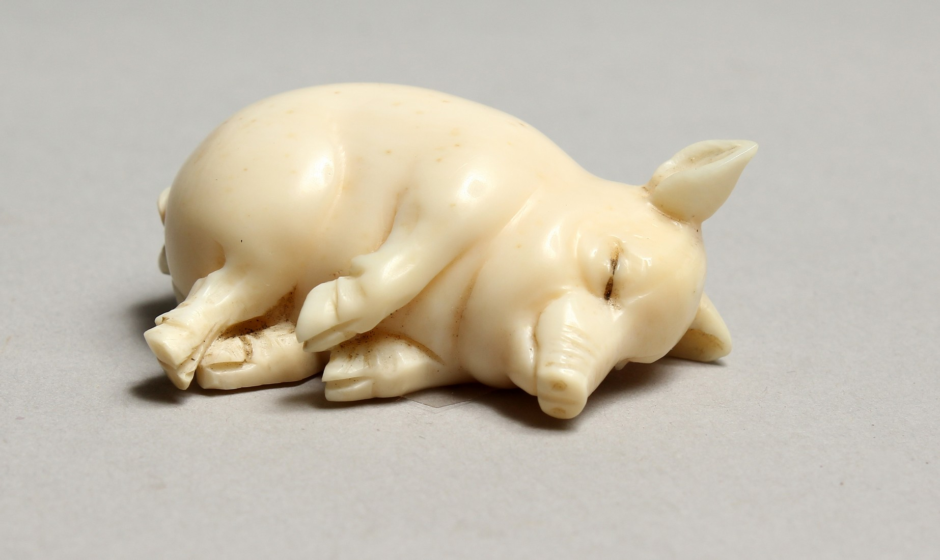 AN IVORY LUCKY PIG, GARRET & SONS, PICCADILLY. 1ins.