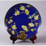 A CHINESE CLOISONNE PLATE & STAND - the dish with a royal blue ground with prunus decoration, 23cm.