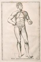 "Human anatomy from Eustachios Tabulae anatomy (circa. 1714), print, 11"" x 7""."