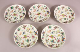 A SET OF 5 19TH CENTURY CHINESE FAMILLE ROSE PORCELAIN SAUCER DISHES - decorated ith flowers and