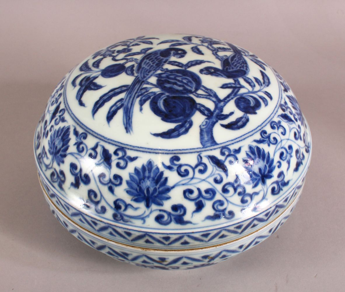 A GOOD CHINESE BLUE AND WHITE PORCELAIN BOX AND COVER, the cover decorated with birds on a peach