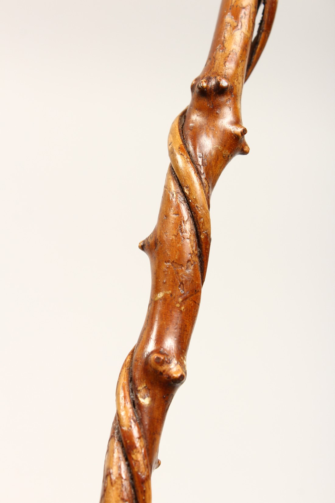 A SMALL DOG'S HEAD WALKING STICK 26ins long - Image 7 of 11