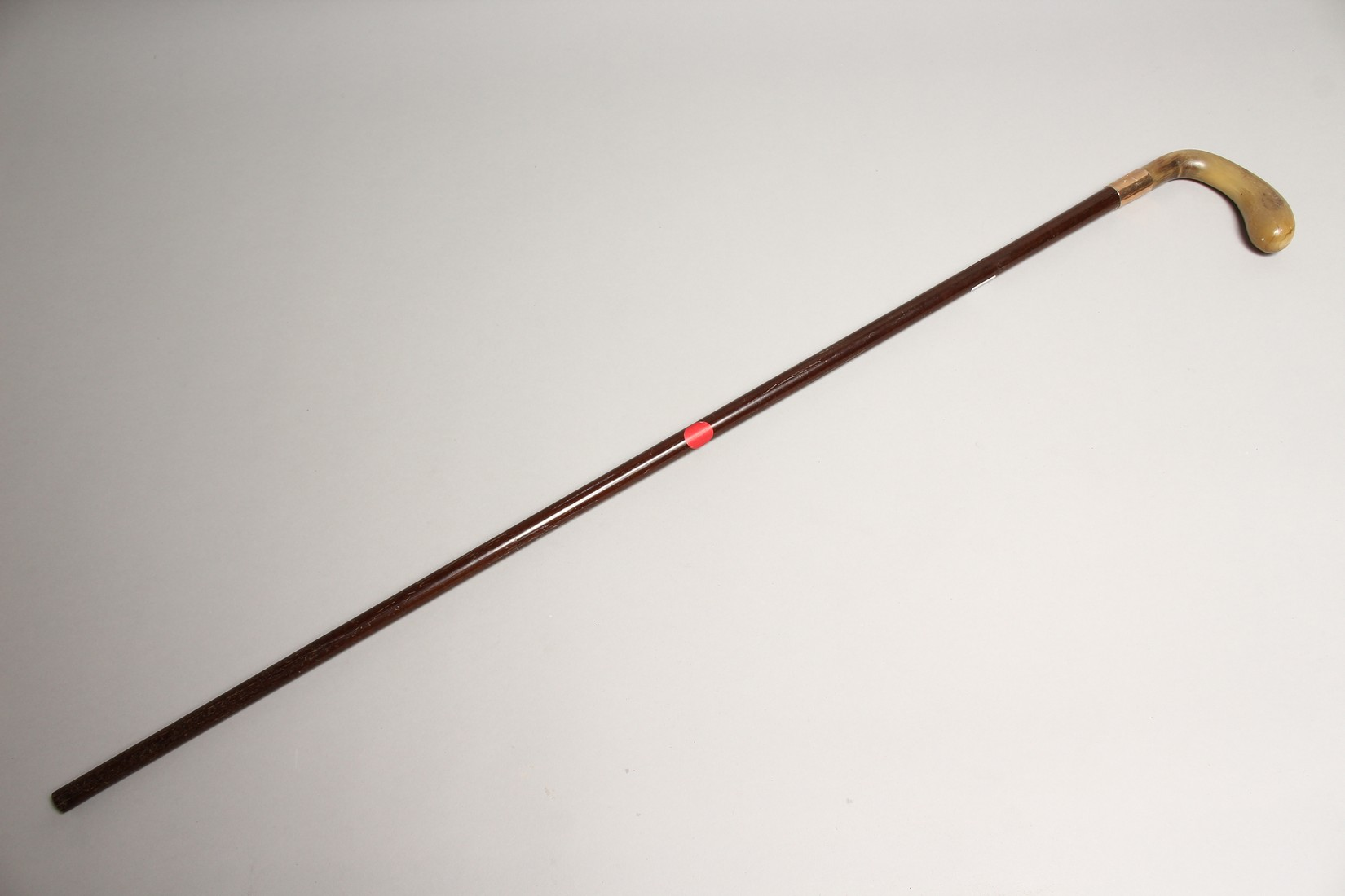 A VICTORIAN RHINO HANDLE WALKING STICK with gold band 2ft 11ins long - Image 10 of 10