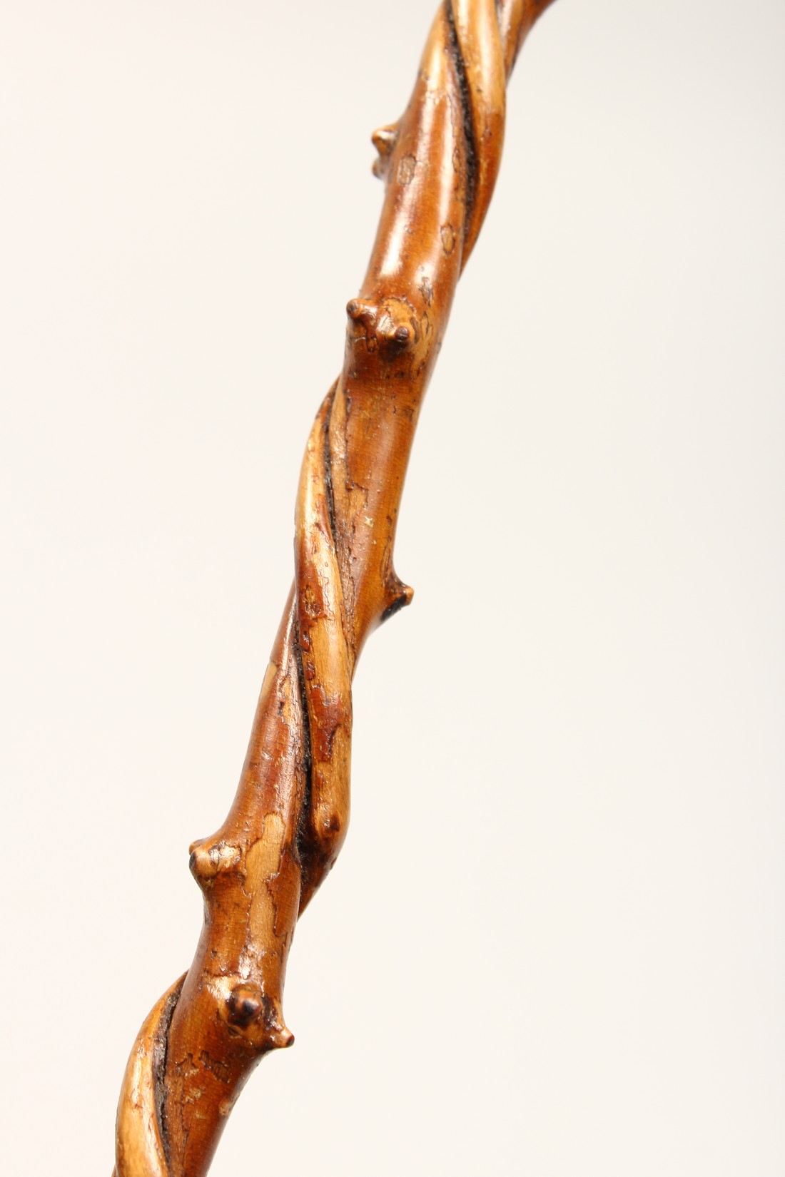 A SMALL DOG'S HEAD WALKING STICK 26ins long - Image 8 of 11