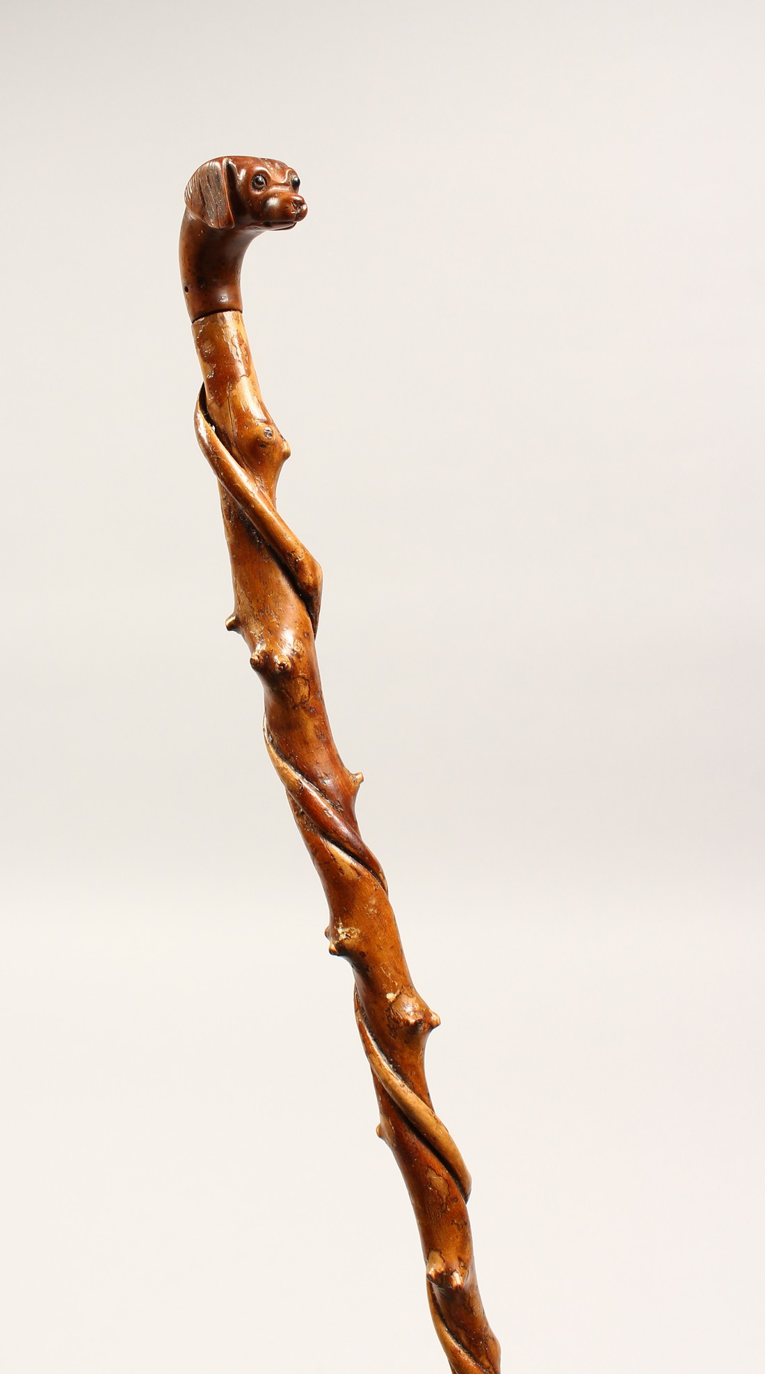 A SMALL DOG'S HEAD WALKING STICK 26ins long