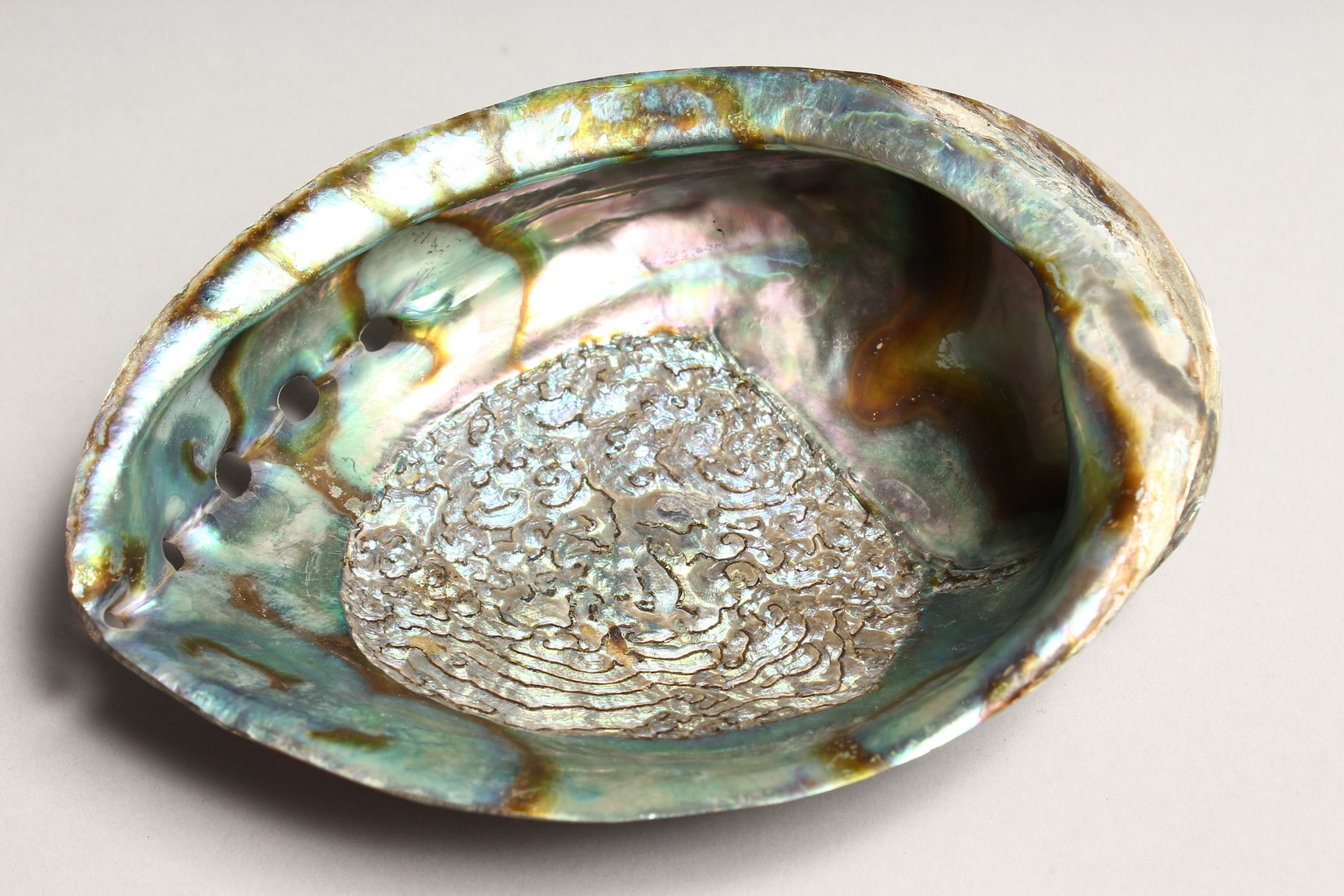 A MOTHER OF PEARL OPEN SHELL 7ins long - Image 4 of 4