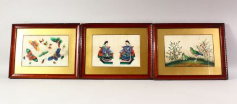 THREE CHINESE PAINTINGS ON RICE PAPER, one depicting butterflies, another depicting birds and native