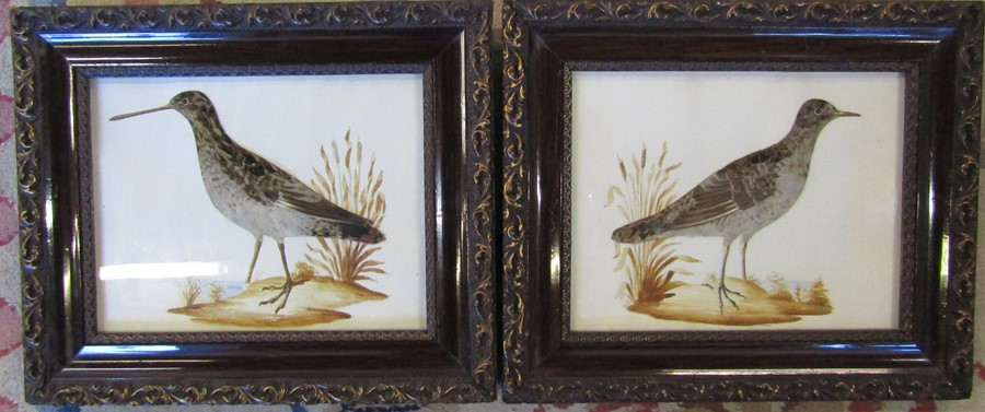 Pair of ornithological feather pictures 33 cm x 28 cm (size including frame)