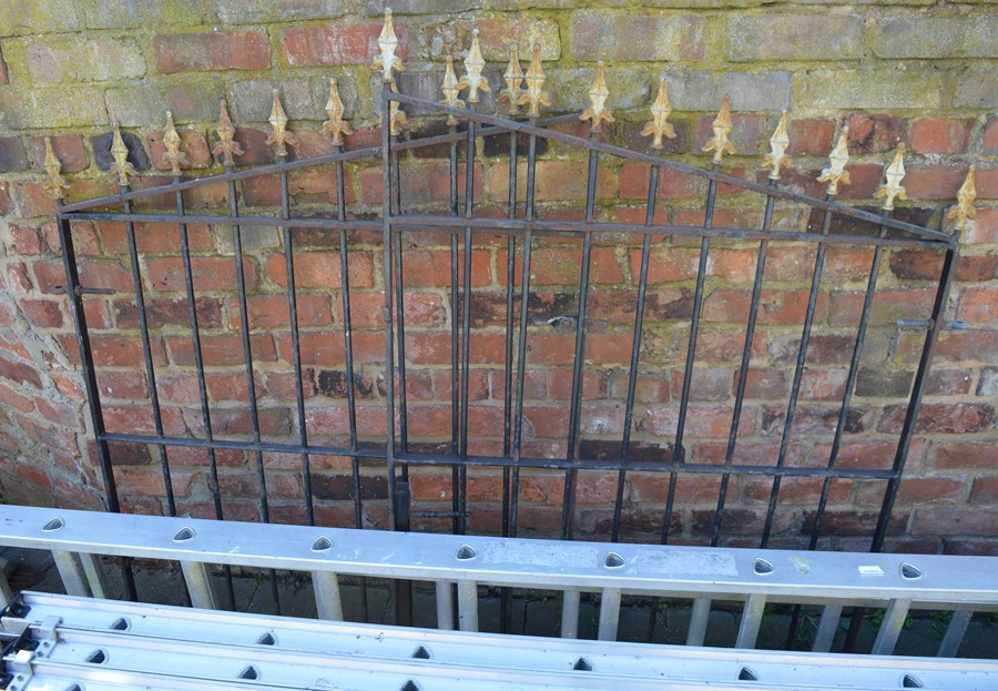 Pair of wrought iron gates each 100cm wide
