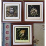 3 framed David Shepherd limited edition prints, signed and numbered in pencil - baby hedgehog 715/