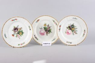 A set of fourteen Copenhagen porcelain dinner plates with hand-painted floral decoration (one