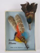 Two Scottish plume brooches one upon ori