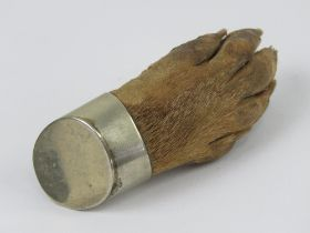 A Victorian otter paw brooch having silv