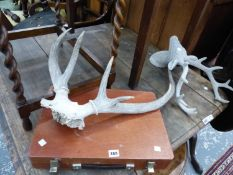 AN ARTIST BOX, STAG ANTLERS ETC.