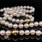 A SUITE OF MIKIMOTO PEARL JEWELLERY COMPRISING OF A GRADUATED AND KNOTTED NECKLACE AND BRACELET EACH