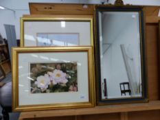 MARILYN REES (CONTEMPORARY). ARR. TWO FLOWER STUDIES, SIGNED WATERCOLOURS. LARGEST 34 x 25cms.