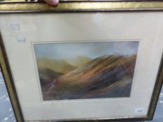 A PASTEL STUDY MOORLAND RIVER.
