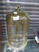 A GLASS BELL JAR.
