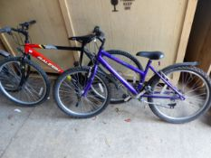 LADYS AND GENTLEMANS RALEIGH BICYCLES