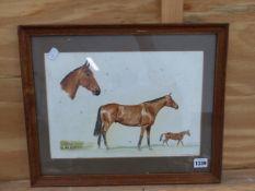 SHEILA PACKHAM (20th CENTURY SCHOOL). ARR. PORTRAIT OF A HORSE, SIGNED, WATERCOLOUR, 24 x 34cm