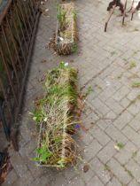 A PAIR OF CONCRETE RECTANGULAR SHAPED PLANTERS