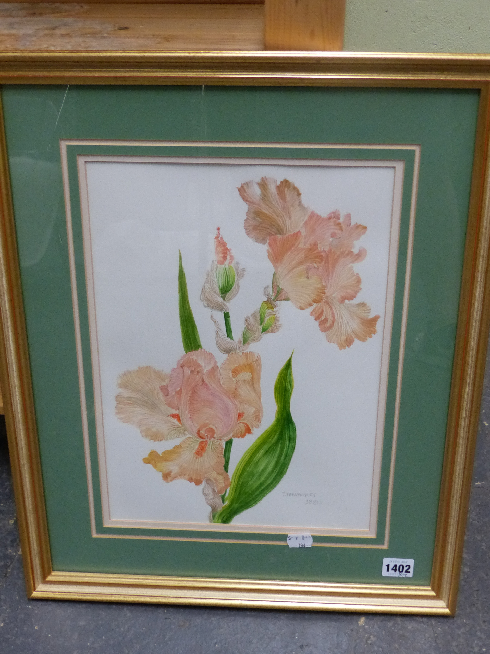 •J. FARVACQUES (20th CENTURY SCHOOL). ARR. THREE BOTANICAL STUDIES, BOTH SIGNED WATERCOLOURS. 36 x - Image 5 of 6