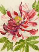 •J. FARVACQUES (20th CENTURY SCHOOL). ARR. TWO BOTANICAL STUDIES, BOTH SIGNED WATERCOLOURS. 36 x