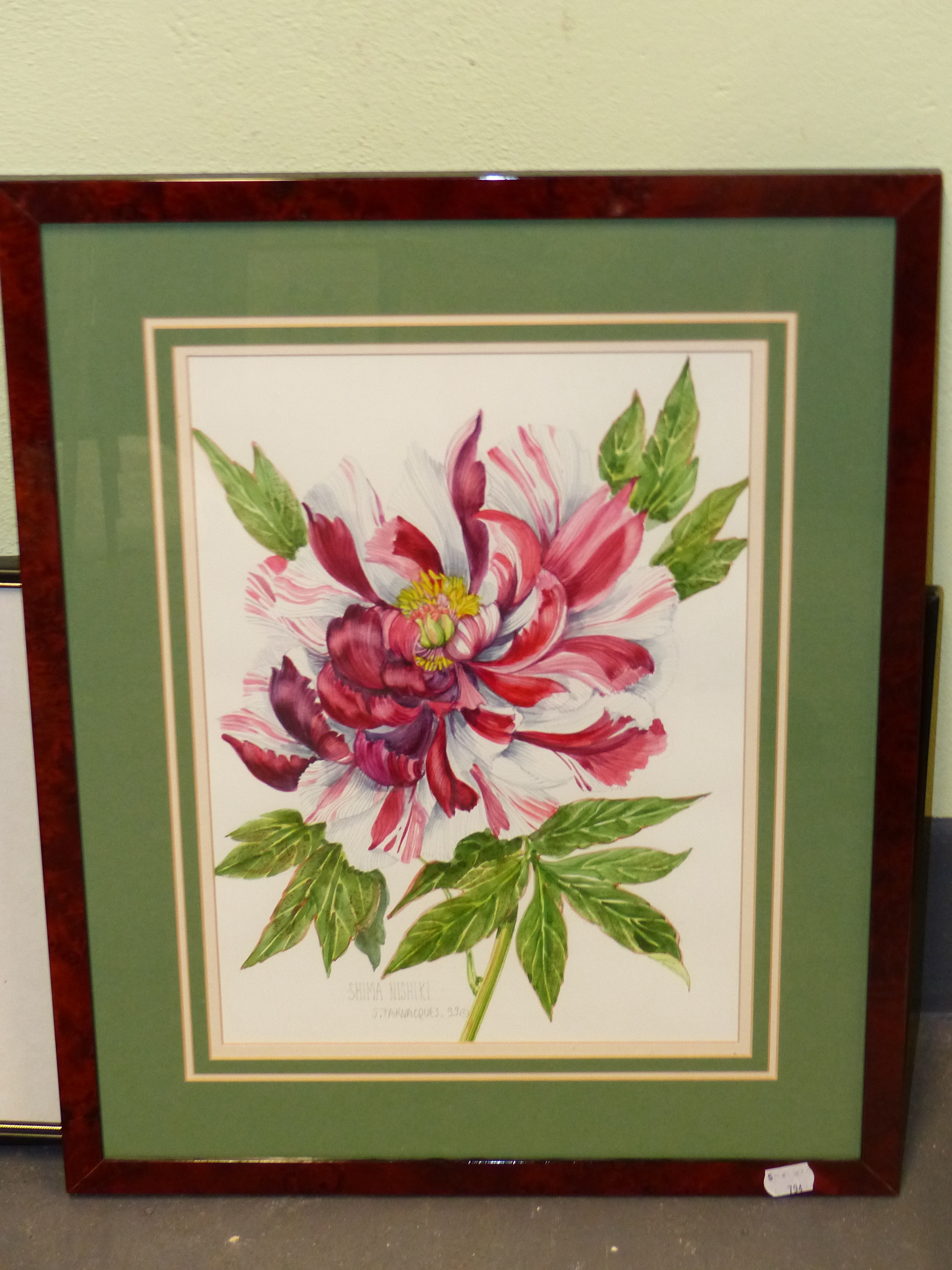 •J. FARVACQUES (20th CENTURY SCHOOL). ARR. THREE BOTANICAL STUDIES, BOTH SIGNED WATERCOLOURS. 36 x - Image 2 of 6