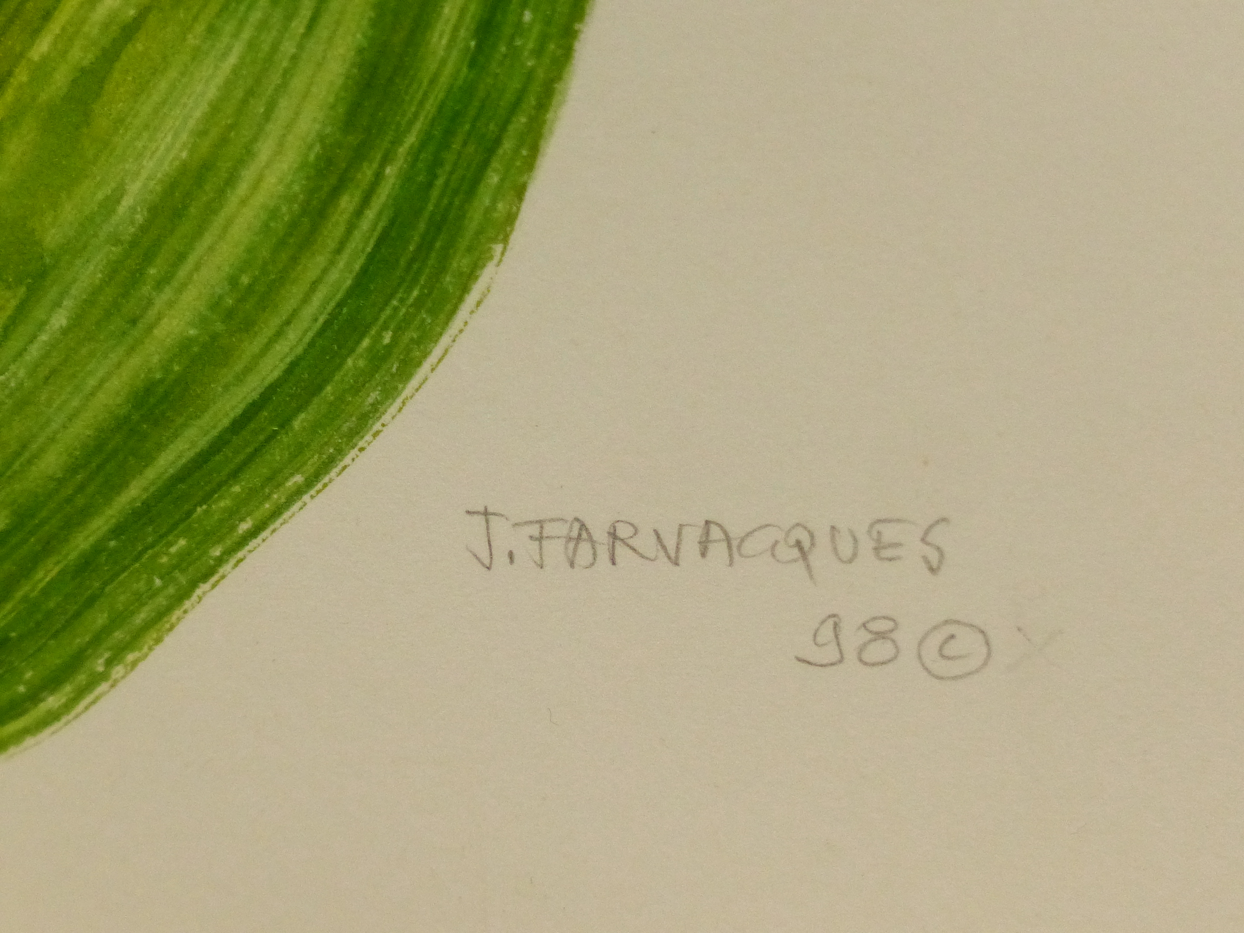 •J. FARVACQUES (20th CENTURY SCHOOL). ARR. THREE BOTANICAL STUDIES, BOTH SIGNED WATERCOLOURS. 36 x - Image 6 of 6
